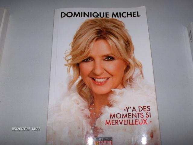 #228 Y'A DES MOMENTS SI MERVEILLEUX DOMINIQUE MICH